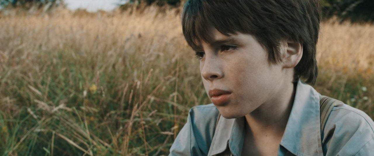 Theo Ribeiro Cinematography Demo Reel